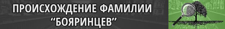 Происхождение фамилии Бояринцов