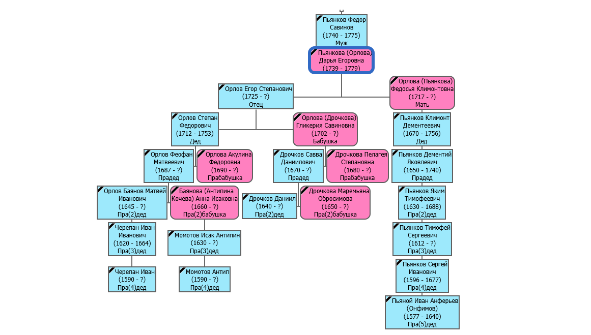 Вертикальное восходящее генеалогическое дерево, предки расположены внизу