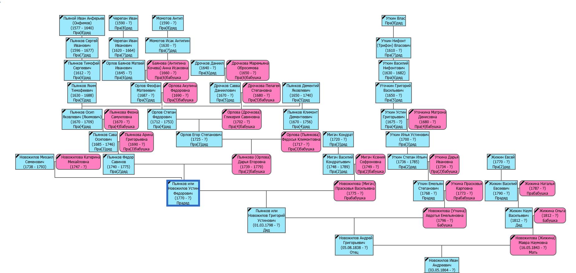 Пример генеалогическое древо, здесь так же указаны приемные родители.