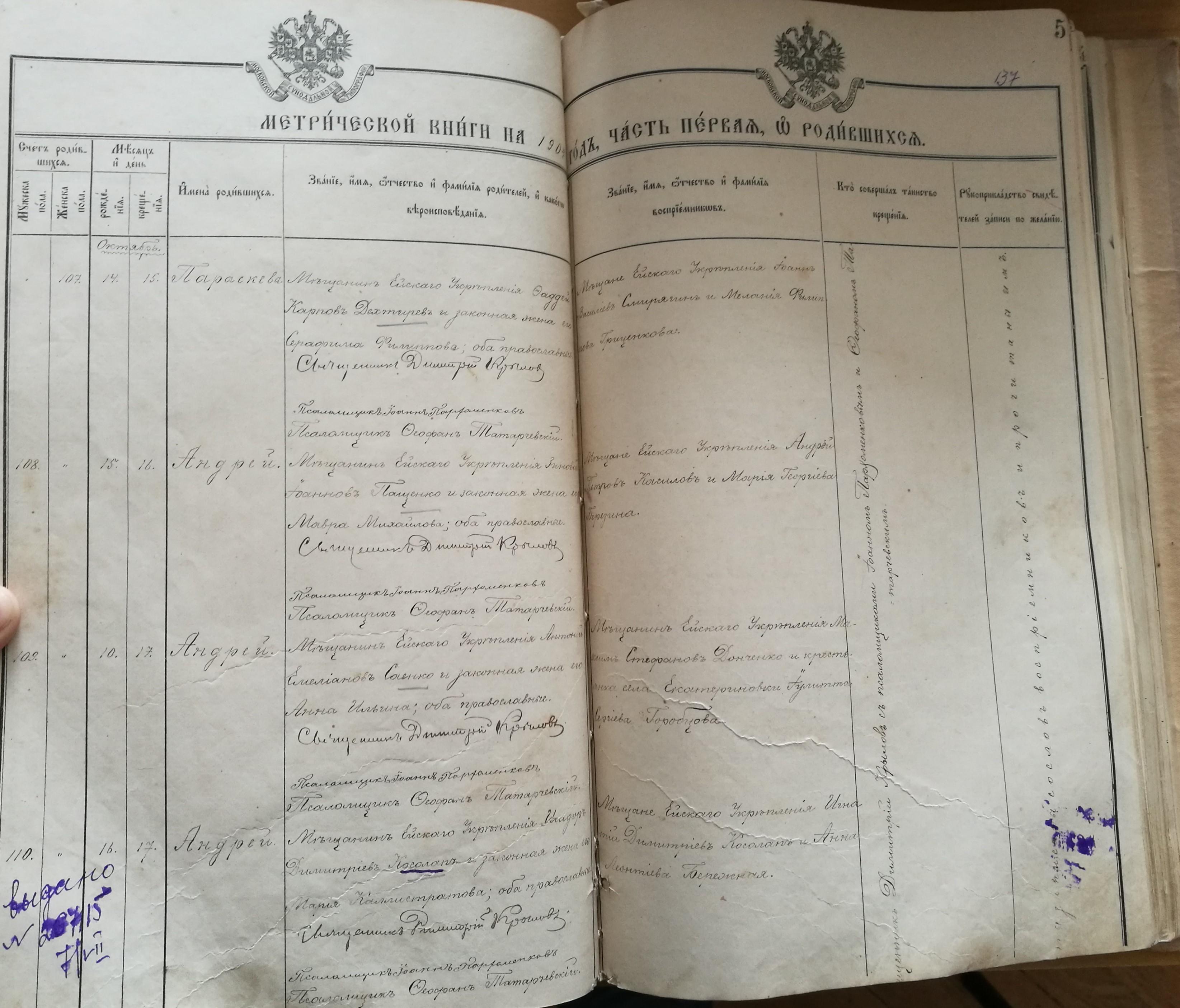 Метрическая книга часть 1 о родившихся за 1904 год по селу Ейское укрепление
