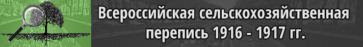 Всероссийская сельскохозяйственная перепись 1916 - 1917 гг.