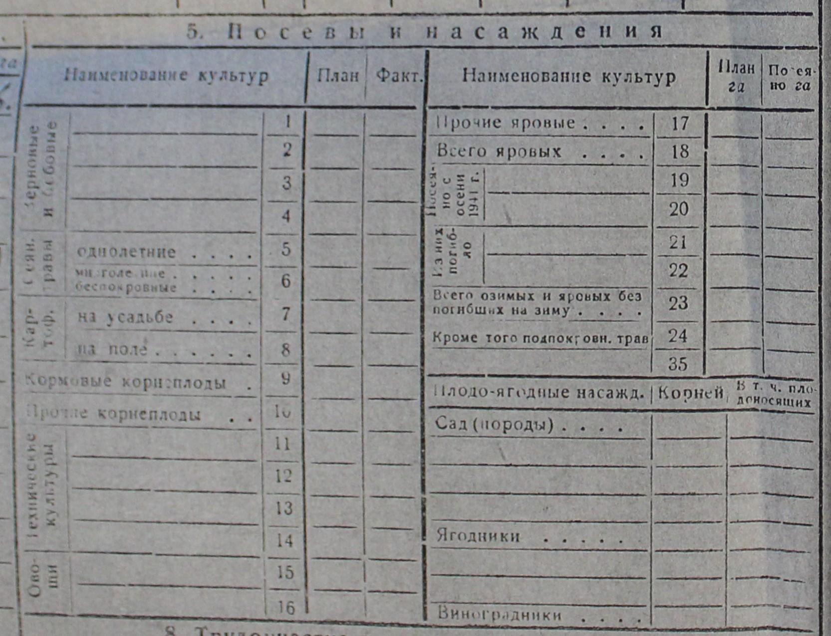 Похозяйственная Книга Попова Николая Алексеевича 5 пункт посевы и насаждения