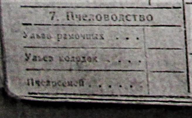 Похозяйственная Книга Попова Николая Алексеевича 7 пункт пчеловодство
