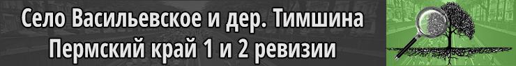 Село Васильевское и деревня Тимшина Пермский край 1 и 2 ревизия