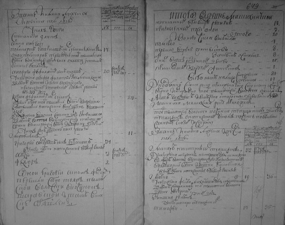 Итоги деревня Мищихинская, ревизская сказка 1764 год.