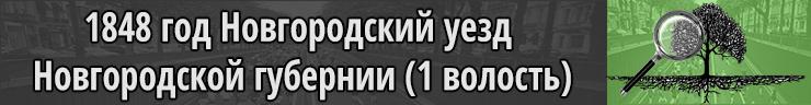 1848 год Новгородский уезд Новгородская губерния 1 волость