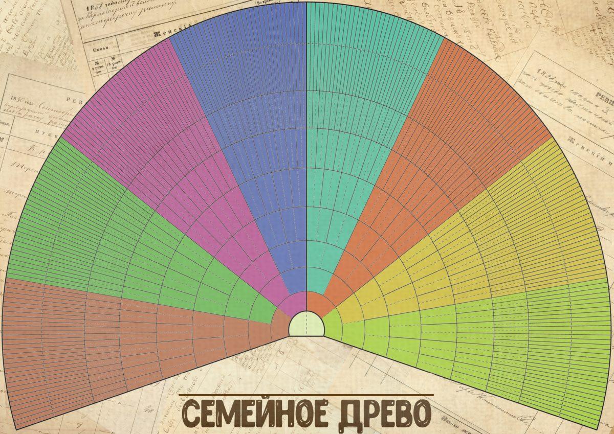 Веерная схема генеалогического дерева. Шаблон для самостоятельного заполнения.
