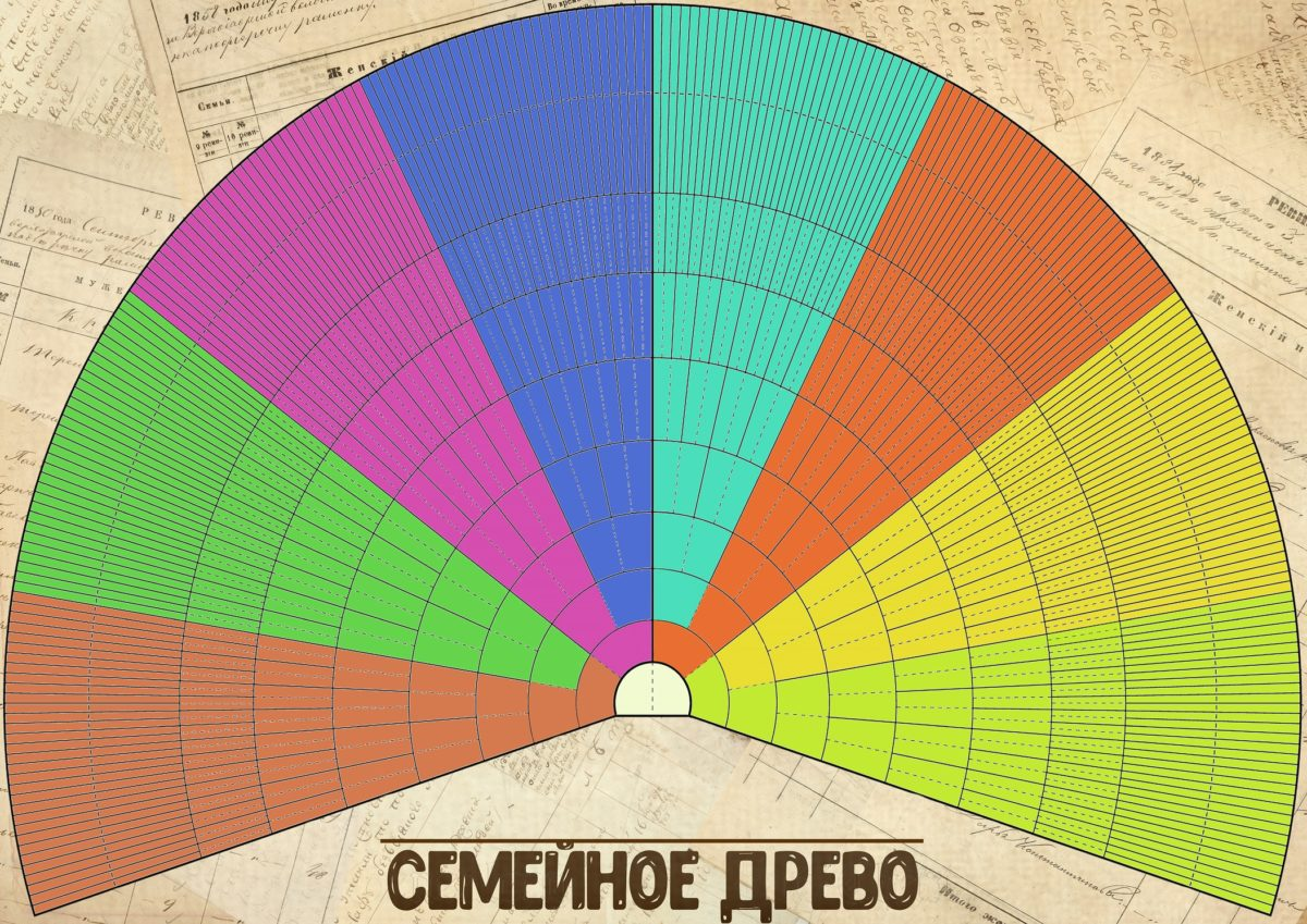 Круговое цветное генеалогическое древо - шаблон для самостоятельного заполнения.