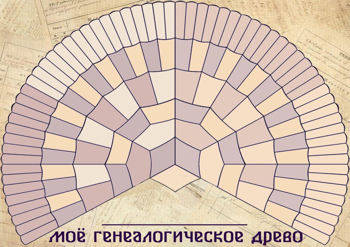 Классический вариант веерной схемы для родословной. Внесите сведения о ваших прямых предках.