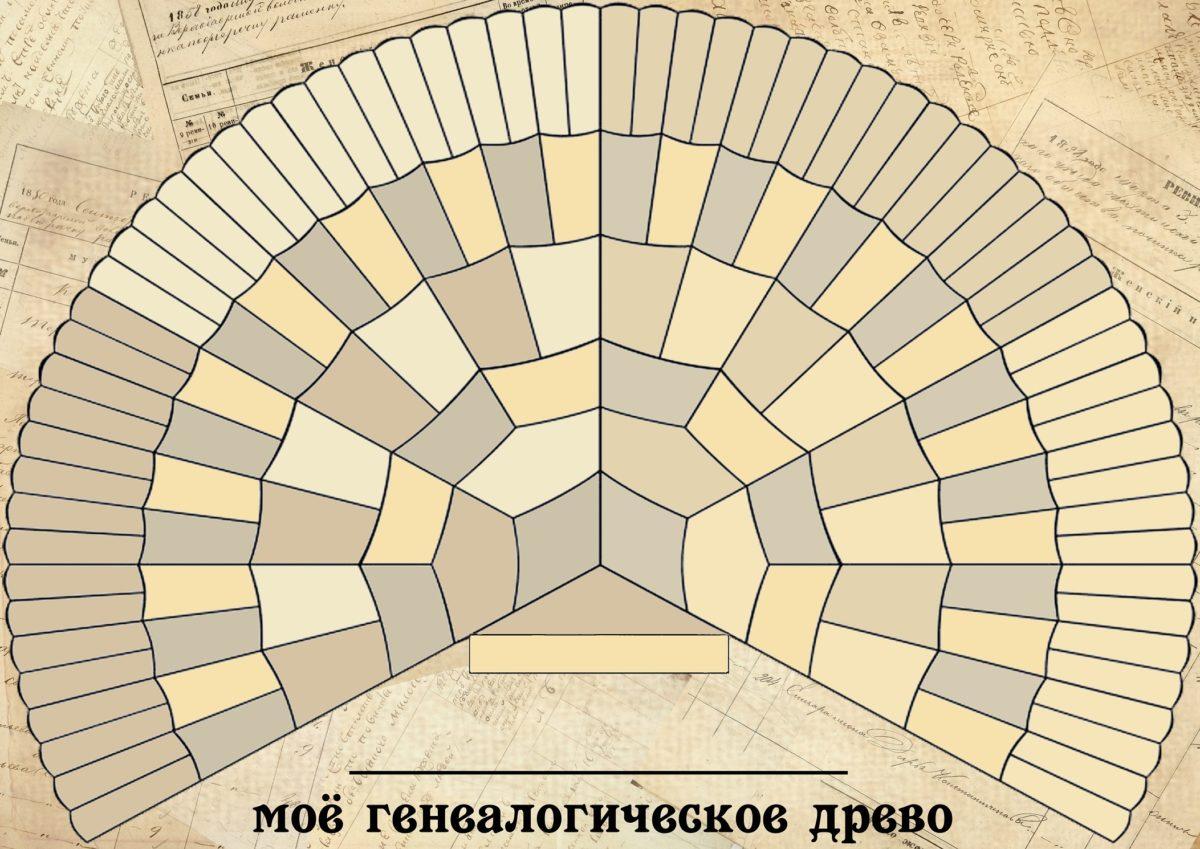 Шаблон генеалогического древа для заполнения школьником при выполнении домашнего задания по окружающему миру. Веерная схема