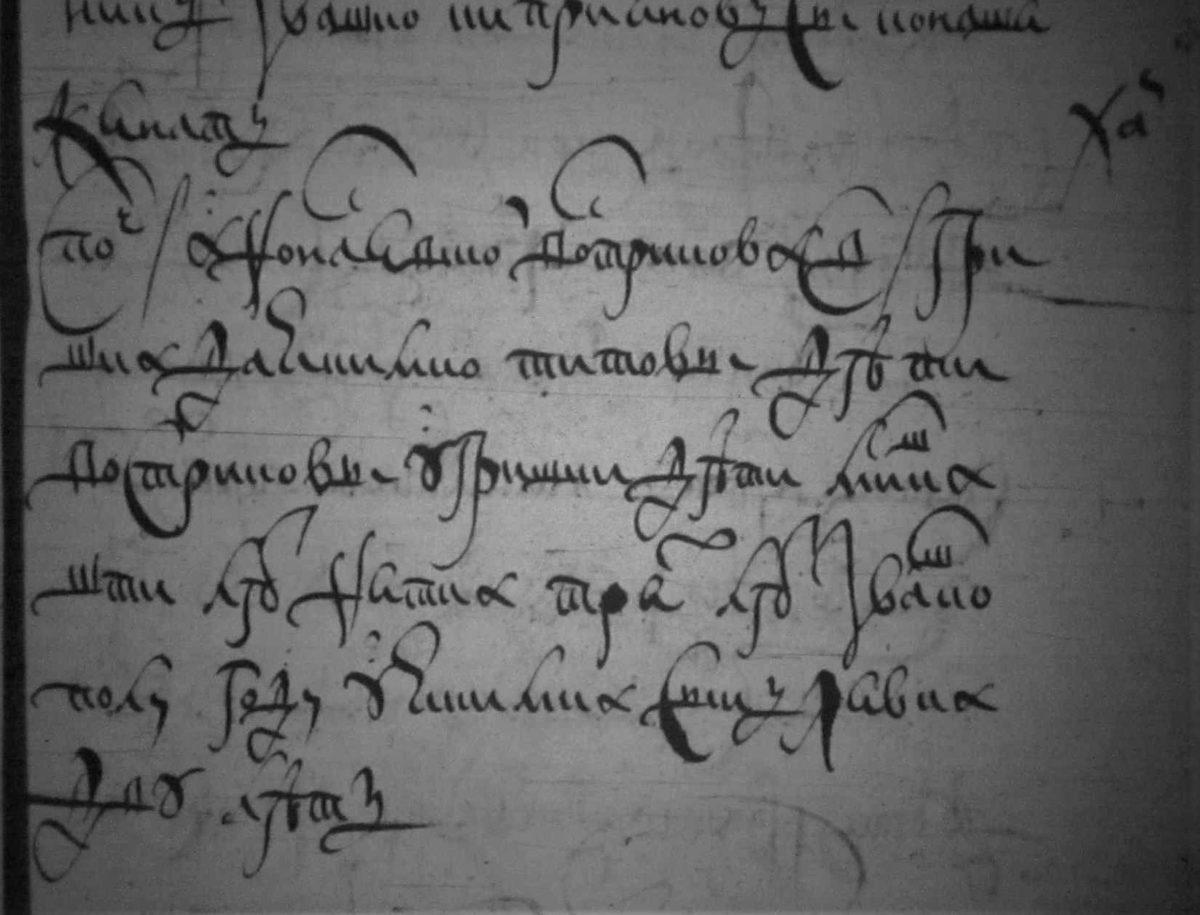 1678 год дозорная книга выписки Блиновы