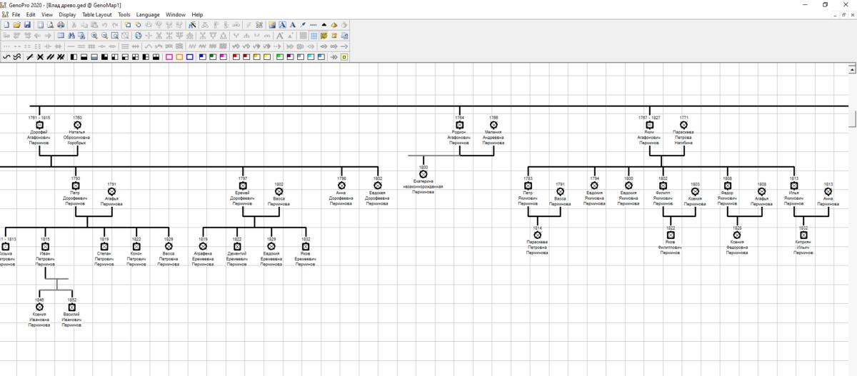 Генеалогическое древо, построенное в программе GenoPro