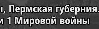 Новожиловы Пермская губерния Участники 1 Мировой войны